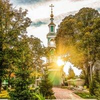 Золотая осень....................... :: Александр Селезнев