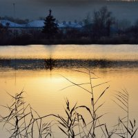 этюды на закате... :: Мария Климова