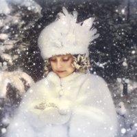 маленькая зима :: Светлана Мизик