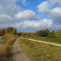 Ходит осень, бродит осень.... :: Galina Dzubina