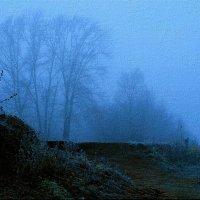 Осень скрылась под сенью тумана ... :: Евгений Юрков
