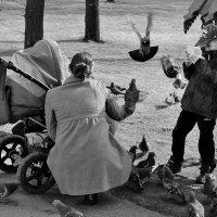 Семья и их ангелы хранители :: Евгений (bugay) Суетинов