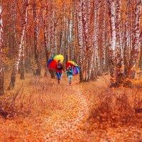 яркие краски :: Марина Жажина