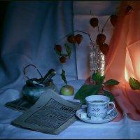 Вечернее  чтение... :: Валерия  Полещикова