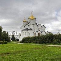Покровский монастырь :: Константин