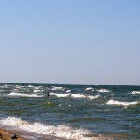 Море! :: Вера Щукина