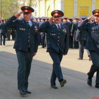 С Днем полиции! :: Андрей Заломленков