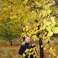"""Осенние зарисовки: """"Золотая Осень"""" :: Aleks Ben Israel"""
