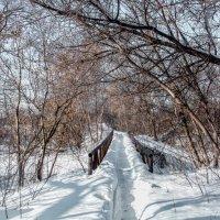 Мост :: Вячеслав Баширов