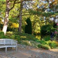 Ботанический сад Гамбурга :: Nina Yudicheva