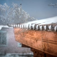 Заметает зима... :: Анна Никонорова