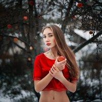 Яблоки на снегу :: Антон Дятлов