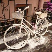 Припорошило снегом)) :: Galina Belle