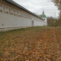 Вдоль старых стен :: Сергей Тарабара