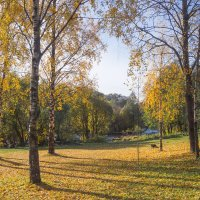 Осень золотая 3 :: Виталий