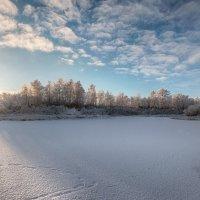 Зимнее утро!!! :: Олег Кулябин