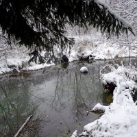 река Воря :: Natalia Mihailova
