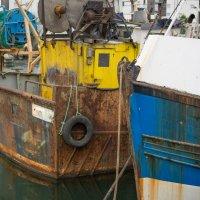 в тихой гавани. :: Арвидс Гурскис