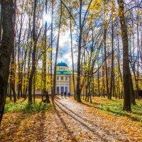 Погулять в парке :: Владимир Безбородов