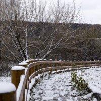 Первый снег :: Янгиров Амир Вараевич