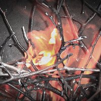 Огонь :: Лариса Димитрова
