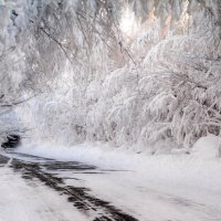Зимняя дорога :: Светлана Луговая