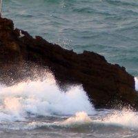 Прибрежный камень. :: Пётр Беркун