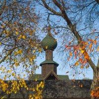 Осень золотая 6 :: Виталий