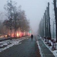Туманное утро :: Александр Алексеев