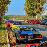 Цветные Ferrari и цветные листья :: M Marikfoto