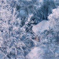 Зимняя сказка для маленького заснеженного домика :: Екатерина Торганская