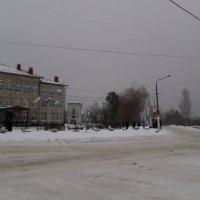 Снег, снег :: Svetlana Lyaxovich