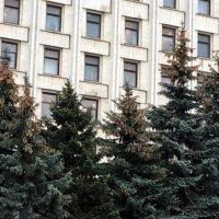 Грозди :: Сергей Рубан