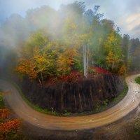 Осенняя круговерть :: Сергей Месилов