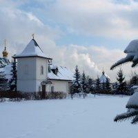 Вот и снежку выпало...:)) :: анна нестерова