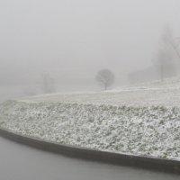 Туманный ноябрь! :: Ирина Олехнович