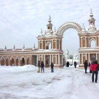Царицыно зимой :: Виталий Селиванов