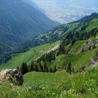 Горные вершины :: Алёна Савина
