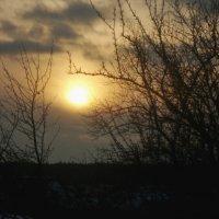 Дачный закат. :: Александр
