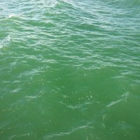 зеленое Балтийское море :: Oxi --