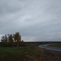 Островок на повороте... :: марина ковшова