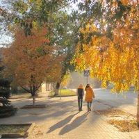 Дорога в осень... :: Нина Бутко
