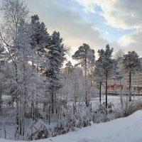 морозный денек... :: Олег Петрушов