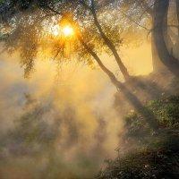 Над пропастью тумана... :: Андрей Войцехов