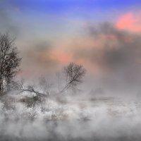 Туманный закат ноября... :: Андрей Войцехов