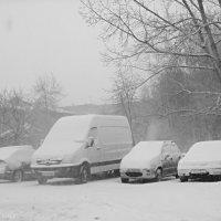 Зима прийшла :: Степан Карачко