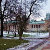 Царицыно зимой :: Владимир Болдырев