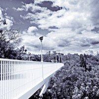Тещин мост :: Ярослава Хмелевская