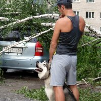 После бури всем неуютно . . :: Мила Бовкун