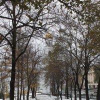 Осенняя аллея :: Татьяна Гузева